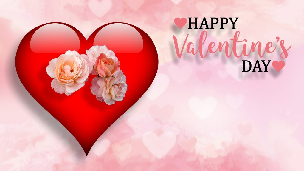valentines-day-3145419_1920
